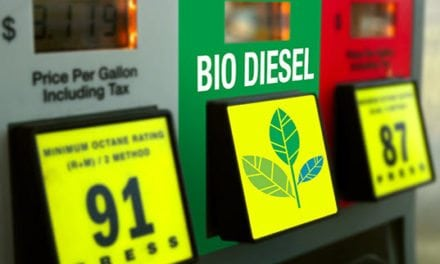 Policy Brief: Biodiesel Tax Credit Back on Track