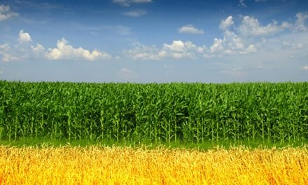Ethanol Industry had Wide-Ranging Impact on National Economy in 2015, According to New Study