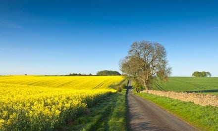 Initiative to Promote Low Carbon Farming Practices and Biofuels