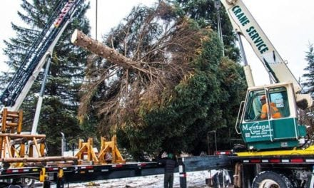 SkyBitz Celebrates 10 Years of Tracking the U.S. Capitol Christmas Tree's Journey to the Nation's Capitol