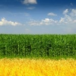 Ethanol and Sustainability Groups Congratulate Tom Vilsack for His Confirmation as USDA Secretary