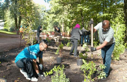 7-Eleven's RENEW™ Program Help Plants 100,000 Trees